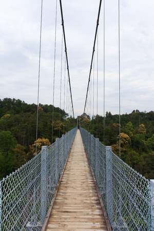 suspension: Suspension bridge over nature scene