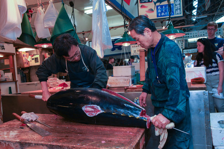 nijo: Fresh Tuna main cut by professional Japanese tuna handlers at Tsukiji fish and seafood market Editorial