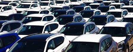 Reihen von neuen Autos Standard-Bild - 52310753