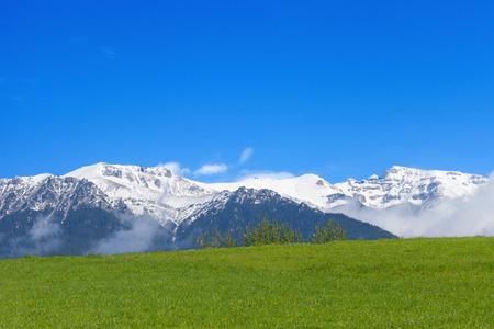 montañas nevadas: montañas cubiertas de nieve con prado verde Foto de archivo