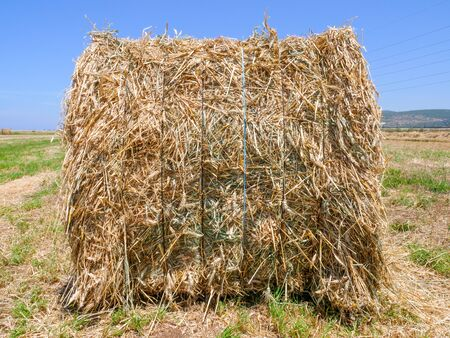 Large square Hay Bale in a field.