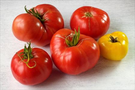 ripe: Ripe tomatoes.