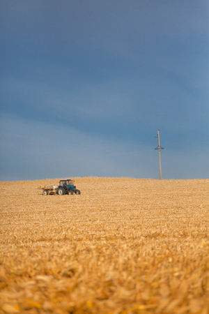 with harvest: Combine harvester harvesting corn in the distance. Combine harvester working on corn field in autumn season.