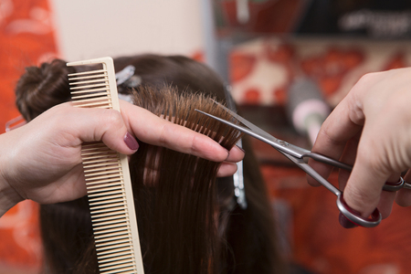 split ends: Getting rid of those split ends. Cropped shot of female hairdresser cutting clients hair with scissors at beauty salon. Stock Photo