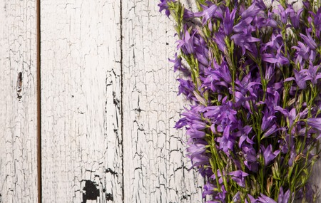 represented: Beautiful lilac represented on wooden background.