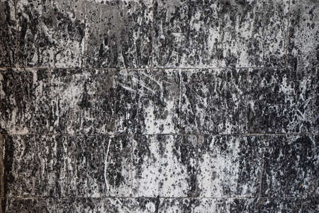 Abstract grunge background. White and black spotted tiled wall after fire. High quality photo.