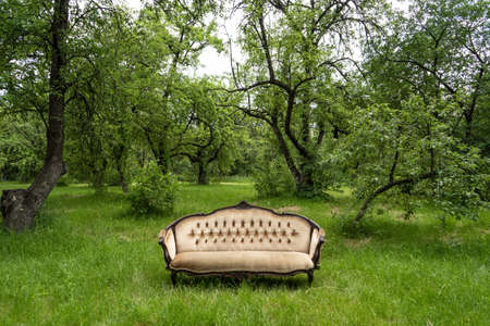 Empty green garden with large luxury sofa at grass in the centre outdoors. 免版税图像