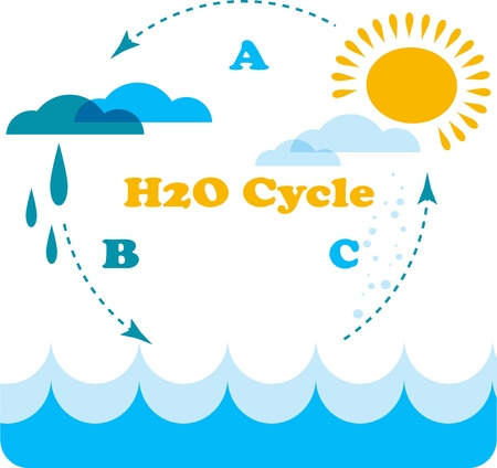 water pollution: water cycle infographics