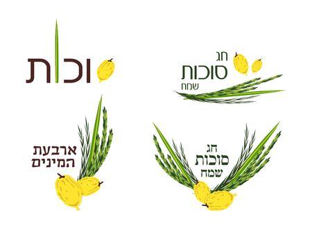 cuatro elementos: Colección de vector de etiquetas y elementos para Sucot, fiesta judío. Sukkot feliz, día de fiesta feliz y cuatro especies en hebreo.