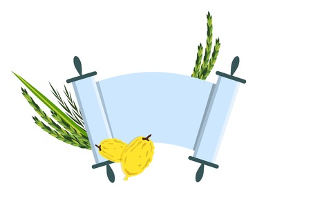 Jewish holiday Sukkot. torah with Lulav, ,Etrog, Arava and Hadas. Four species symbols date palm, citron, willow, myrtle illustration