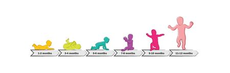 Baby Development Stages Milestones First One Year . Timeline of child milestones of the first year Stock fotó - 76866844