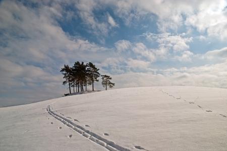 masuria: Cross country skiing in Masuria Stock Photo
