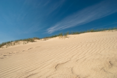 Seaside dunes formed by wind photo