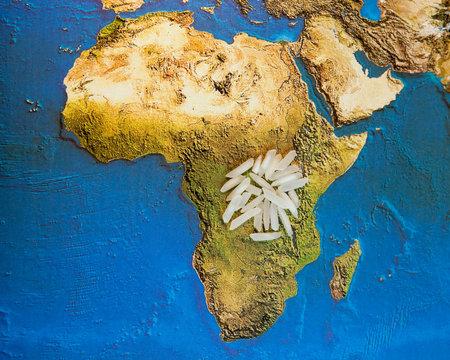 Rice grains on Afrca map photo