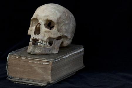 Real human skull on book Stock Photo - 8869017