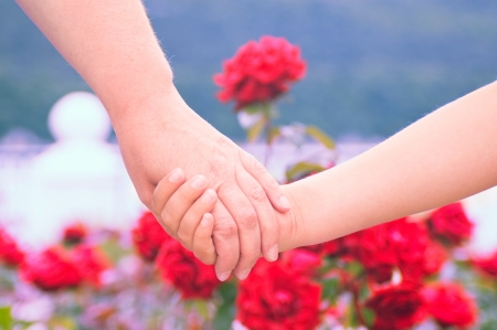 Two hands on roses