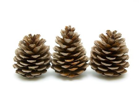 Three cones on white  photo