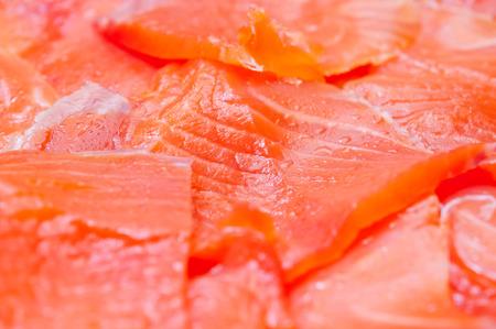 Fresh red salmon photo