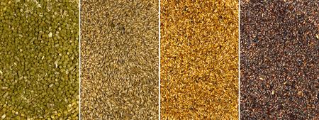 Hintergründe von Malz Samen und getrockneten Hopfen