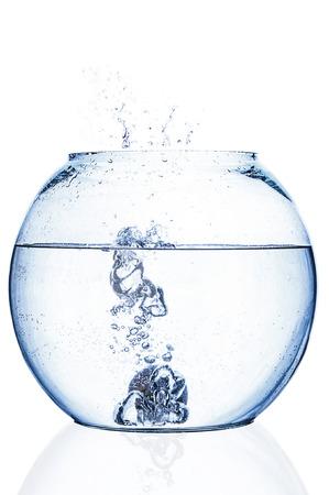 fishbowl: Water splash in fishbowl on white background