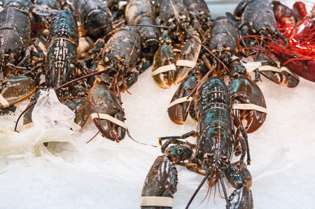 lobsters: Lobsters at the market Stock Photo