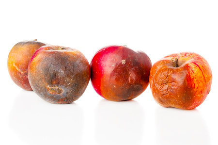 Rotten apples on white background Archivio Fotografico