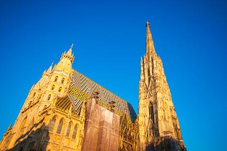 religion catolica: Catedral de St. Stephan al atardecer en Viena, Austria. Catedral Católica es el símbolo nacional de Austria y el símbolo de Viena Foto de archivo
