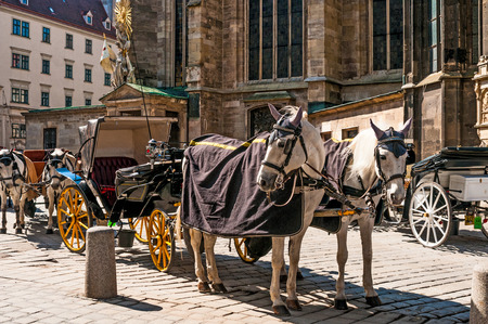stephansplatz: Traditional old-fashioned fiacres at Stephansplatz of Vienna, Austria.