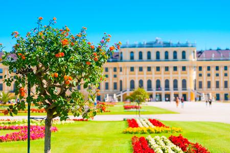 View of Schonbrunn Palace and garden