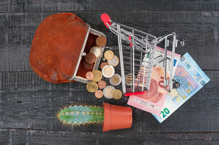 Shopping concept with trolley, cash money, purse and cactus on a wooden background Banco de Imagens