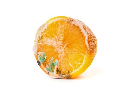 Rotten lemon close up isolated on white background Stock Photo
