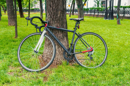Racing bicycle in a summer park Stockfoto