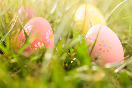 Colorful easter eggs on the sunny green meadow