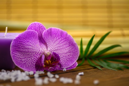 Purple orchid and candle on bamboo blurred background. 版權商用圖片