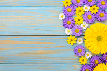 Yellow gerbera, daisy and purple  flowers on a blue wooden table. The flowers are arranged side by side. Top view,  .