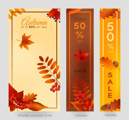 Colorful autumn leaves and berries, sale banner set with frame, autumn forest webb banner templates, 300x600, 160x600 and 120x600px.
