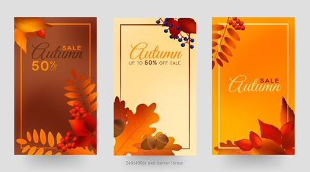 Colorful autumn leaves and berries, sale banner set with frame, autumn forest webb banner templates, 240x400px