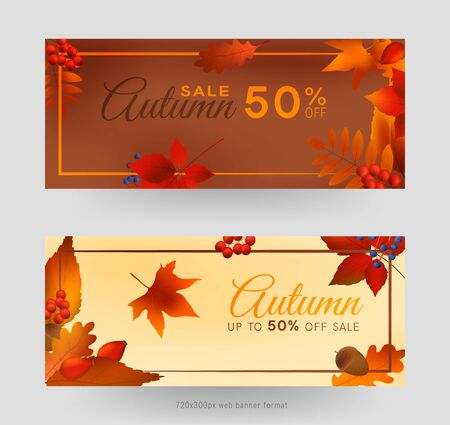 Colorful autumn leaves and berries, sale banner set with frame, autumn forest webb banner templates, 720x300px