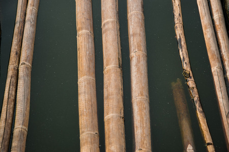 bamboo stick walkpath in dirty turbid water photo