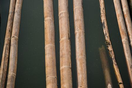 turbid: bamboo stick walkpath in dirty turbid water