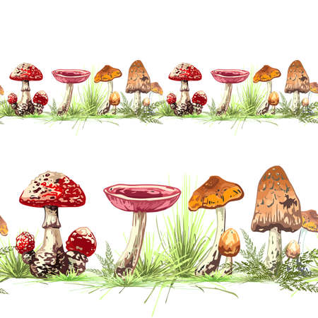 colored mushrooms and herbs seamless pattern, vector illustration with dark outline, hand drawing, pattern, border Vetores
