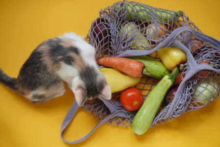 Cute colored kitten, gray bag string bag with vegetables, zucchini, bell peppers, carrots, beets, onions yellow background.Harvest from garden fresh bright vegetables.Concept zero waste.Top view. Flat lay.