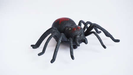 Black clockwork plastic toy spider on a white background, close up. oncept of celebrating the day of the dead, Halloween. 免版税图像