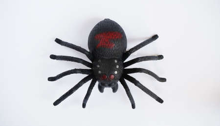 Black clockwork plastic toy spider on a white background, close up.? concept of celebrating the day of the dead, Halloween.Top view, flat lay.
