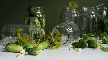 Glass jars, fresh cucumbers, dill, garlic and black pepper on a white table on a green background. Ingredients for canning, pickling or fermenting vegetables. Home recipes for pickling cucumbers Stock Photo