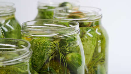 Closeup glass jars filled with fresh cucumbers, dill, garlic and black pepper and poured with brine white background.Canning, pickling fermenting vegetables.Homemade pickling cucumber recipes.Copy space Stock Photo