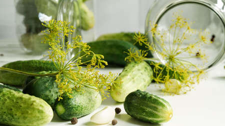 Close-up glass jars, fresh cucumbers, dill, garlic and black pepper on a white plate.Ingredients for canning, pickling or fermenting vegetables.Homemade pickling cucumber recipes Stock Photo