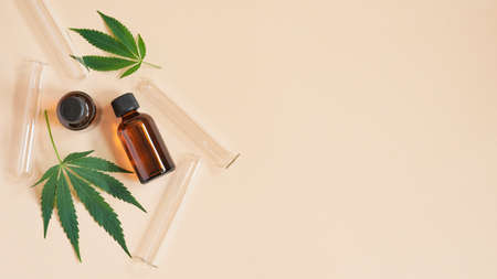 Medical Marijuana Cannabis oil extract in bottle green hemp leaves and glass test tubes beige background.Close-up glass bottles with CBD oil, THC tincture and hemp leaves, top view, flat lay.Copy space