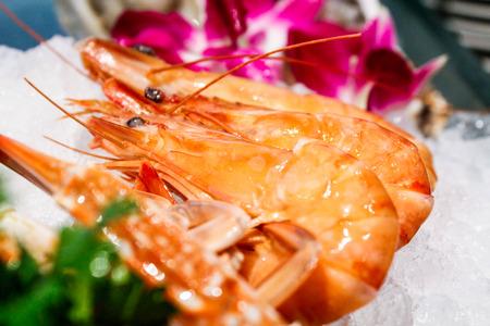 jumbo shrimp: Jumbo shrimp Stock Photo