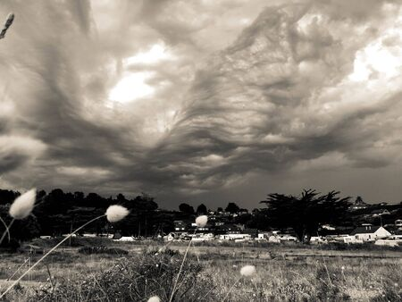 black and white photo of a meadow during a storm Stok Fotoğraf